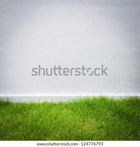 white wall and green grass background