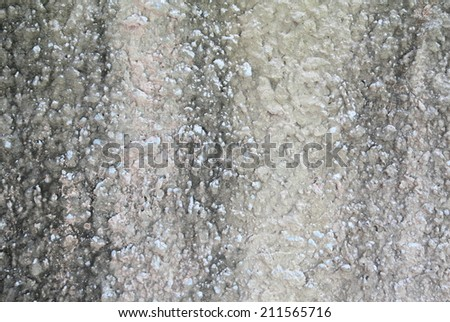 white wall texture old dirty scratched plaster as grunge background #211565716