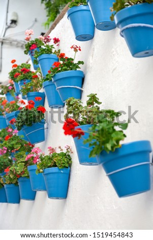 281 & Spanish blue garden pots on a white wall Free Images and ...