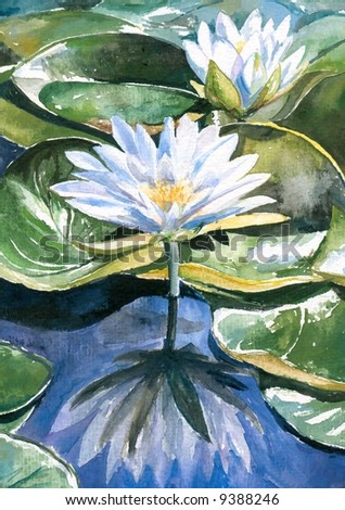 White water-lily.Picture I have painted by myself with watercolors.