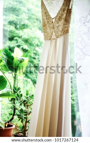 White wedding dress on hanger. Bridal fashion and beauty. Beautiful  elegance cloth, gown for bride. Marriage celebration elegant background. Fabric luxury clothing. #1017267124