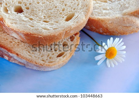 white wheat bread slices over blue background
