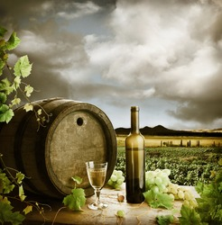 White wine and vineyard in vintage style