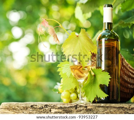 White wine bottle, glass, young vine and bunch of grapes against green spring background
