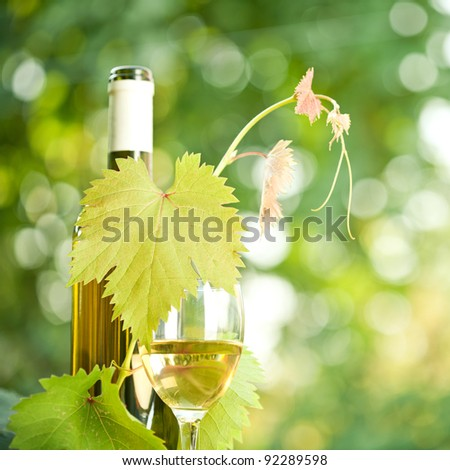 White wine bottle, grapevine and wineglass against green spring background