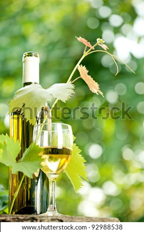 White wine bottle, young vine and glass against green spring background