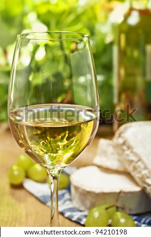 White wine, Brie, Camembert and grape on the wood surface, outdoor