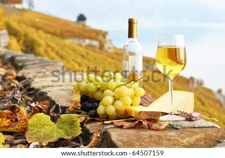 White wine, cheese and grapes on the terrace of vineyard in Lavaux region, Switzerland