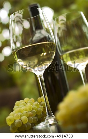 White wine in glass outside close up shoot