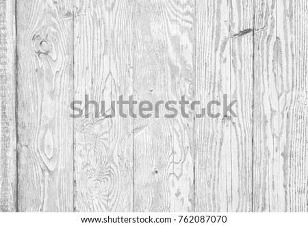 White wood texture background of distressed pine wood with knots. Natural white wooden texture wallpaper. Cool grayscale abstract background. Gray image of burnt wood. White wooden table top view.
