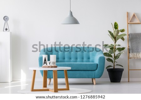 White wooden coffee table next to blue elegant couch in bright living room interior with plant in black pot and scandinavian ladder #1276885942