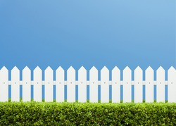 White wooden fence and Green bush on a clear blue sky background. Green leaves wall with parallel plank in nature summer background.