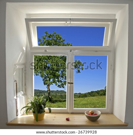 white wooden windows pane with apples and plant with outside view of tree and field