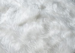 White wool texture background,cotton wool