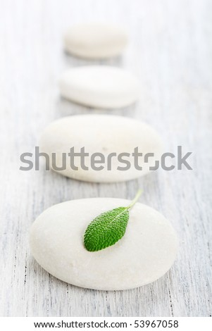 white zen stones and leaf - stock photo
