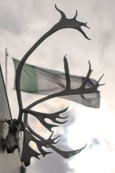 Whitehorse, Canada. Close up of caribou skull with antlers hanging outside from a building wall with Yukon Territory flag waving in the wind in the background.