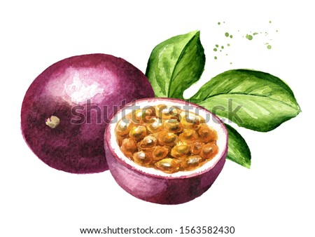 Whole and half passion fruits maracuya with green leaf. Watercolor hand drawn illustration isolated on white background