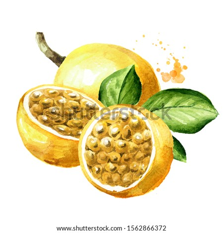 Whole and half yellow passion fruits maracuya with green leaf. Watercolor hand drawn illustration, isolated on white background