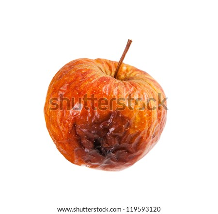 Whole decayed bad red apple fruit with wrinkled peel on white background, wastage of rotten food. Nobody, studio shot.