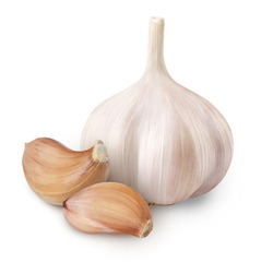 Whole garlic and cloves isolated on white background. Full depth of field.