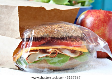 Whole grain sandwich in a brown paper lunch bag.