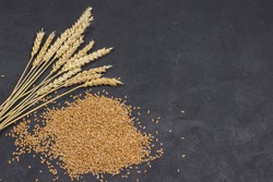 Whole grains and spikelets of wheat. Healthy carbohydrates. Dietary fiber. Black background. Copy space. Flat lay
