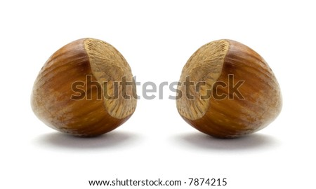 Whole Hazelnuts isolated on white background