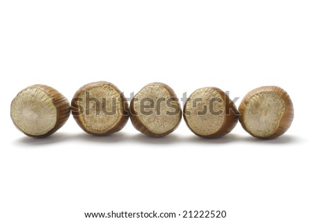 Whole Hazelnuts line isolated on white background