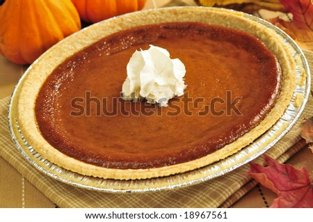 Whole pumpkin pie with fresh whipped cream
