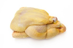 whole raw guinea fowl isolated on a white background
