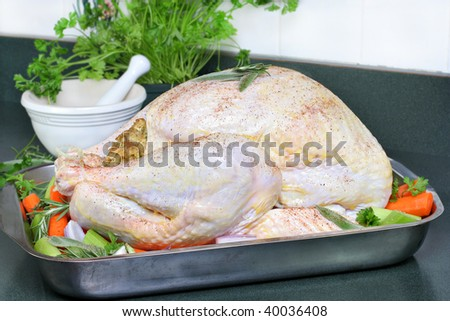 Whole raw turkey, dressed with butter, spices and surrounded with vegetables ready to go into the oven.