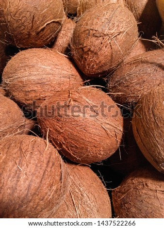 Whole raw  whole coconuts for sale at  market . #1437522266