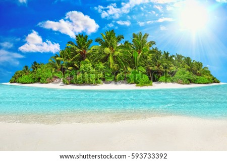Whole tropical island within atoll in Indian Ocean. Uninhabited and wild subtropical isle with palm trees. Blank  sand on a tropical island. #593733392