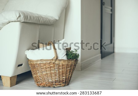Wicker basket with pillows and green home plant on a floor by the sofa, modern home interior decor