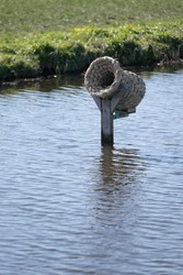 Wicker duck basket on a wooden post in a ditch, mirrored in water, an ideal hiding and breeding place for wild ducks and other water birds