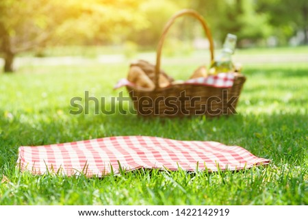 Wicker picnic basket with food and red checkered tablecloth on the grass in a park. Summer picnic background concept.