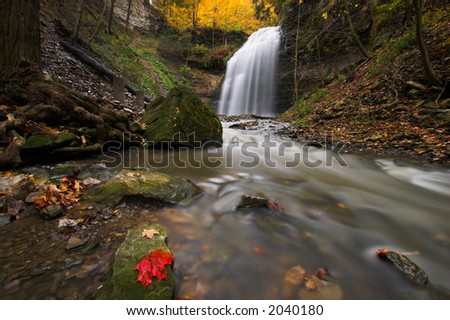 Wide angle image of creek in a canyon with waterfall in the background and red maple leaf on a rock in the foreground.
