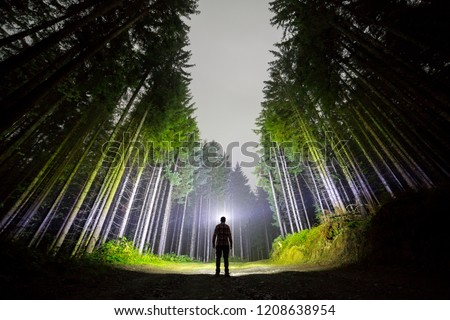 Wide angle shot, back view of athletic man with head flashlight standing on forest ground road among tall brightly illuminated fir-trees under beautiful dark blue night sky. Traveling and adventure.