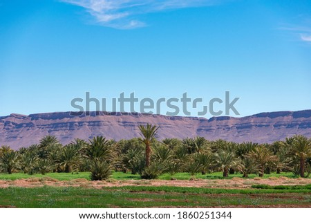 Photo of  Wide angle shot of rock formations and palm trees during the day in Draa Valley, Morocco