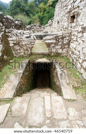 Wide angle view of entrance to tunnel and stone work in 'The Palace' with steamy jungle in background at the ancient Mayan city of Palenque. Chiapas, Mexico.