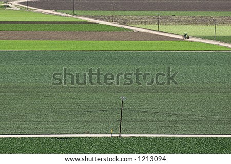 Wide angle view of fields of multi-colored vegetables and a lone tractor on a dirt road.