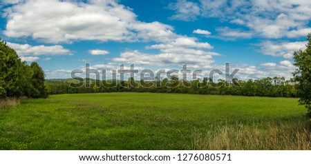 Wide angle view of open farm grass field featuring vivid grass field with evergreen forest on background on a bright sunny day with blue sky and white clouds #1276080571