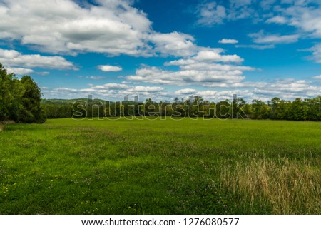 Wide angle view of open farm grass field featuring vivid grass field with evergreen forest on background on a bright sunny day with blue sky and white clouds #1276080577