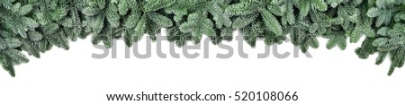 Wide Christmas border arranged with frosted fir branches isolated on white shaped as an arch, banner format