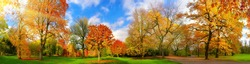 Wide colorful panorama of a gorgeous park in autumn, a tranquil and happy outdoor scene