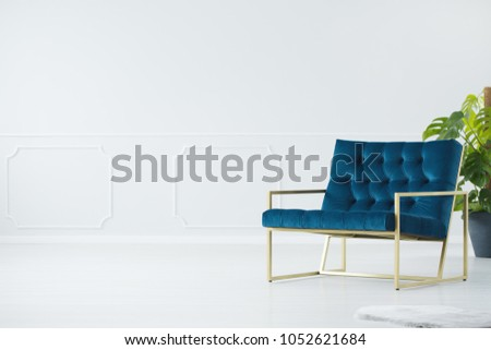 Wide, elegant, navy blue, upholstered chair with a golden, metal frame and a monstera deliciosa plant in an empty, modern interior with a white wall #1052621684
