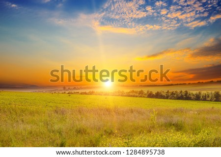 Wide landscape of green field and epic sunset #1284895738