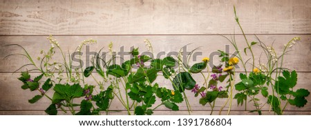 Wide long banner, summer cover for social networks - a romantic vintage spring or summer composition of forest flowers and plants on a light wooden background.
