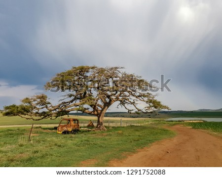 Wide of a dirt road passing a rusted and abandoned truck lying under the branches of a tree against a blue washed sky. #1291752088