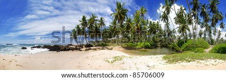 Wide panoramic photo of a tropical paradise on Sri Lanka with palms hanging over the beach and turquoise sea.